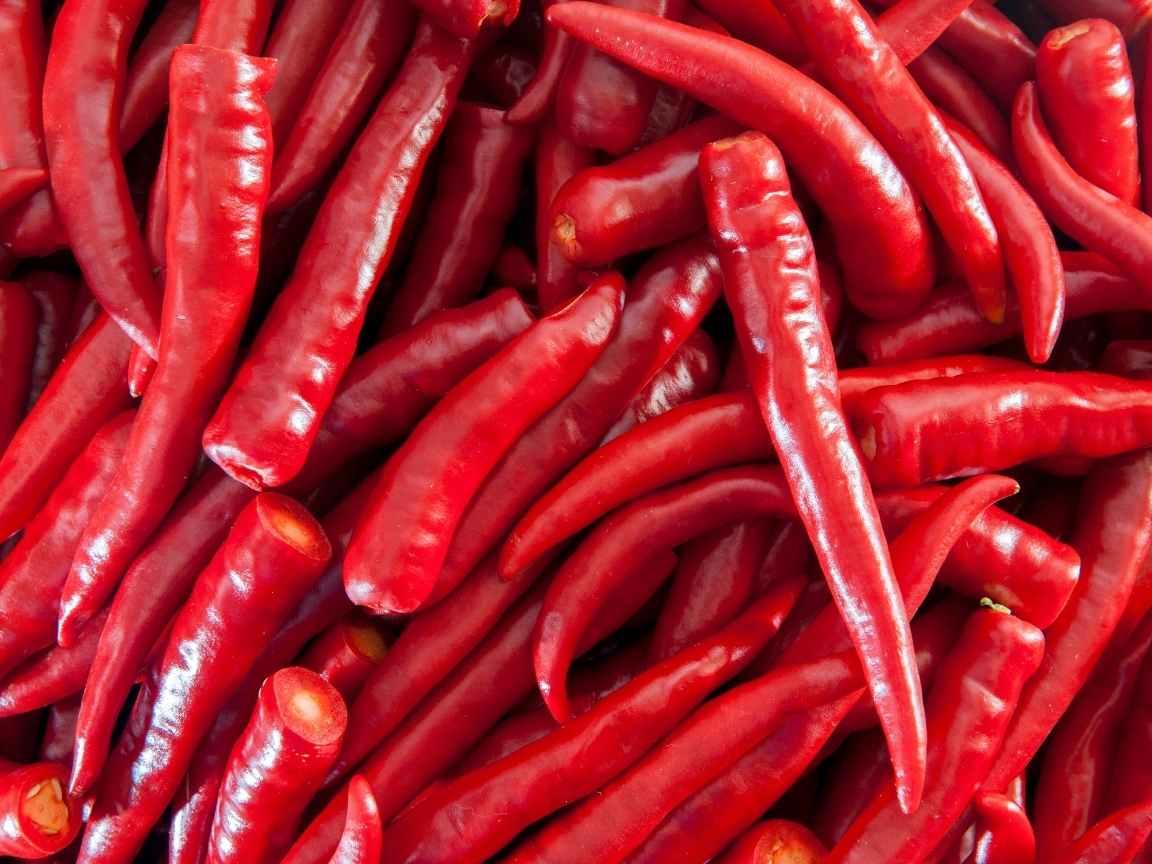 Ajies o chiles rojos frescos