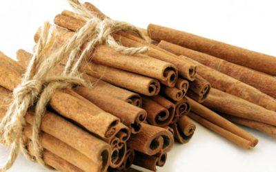 Origen de la canela y sus variedades