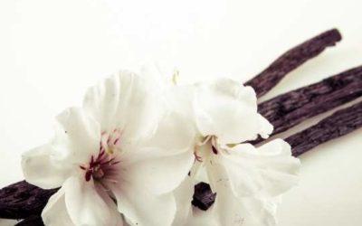 Los 12 Beneficios de la Vainilla Natural para la salud